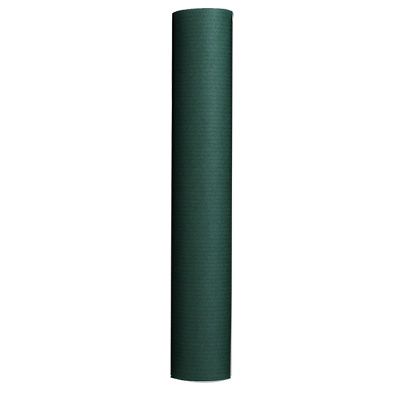papier-cadeau-kraft-vert-pa300
